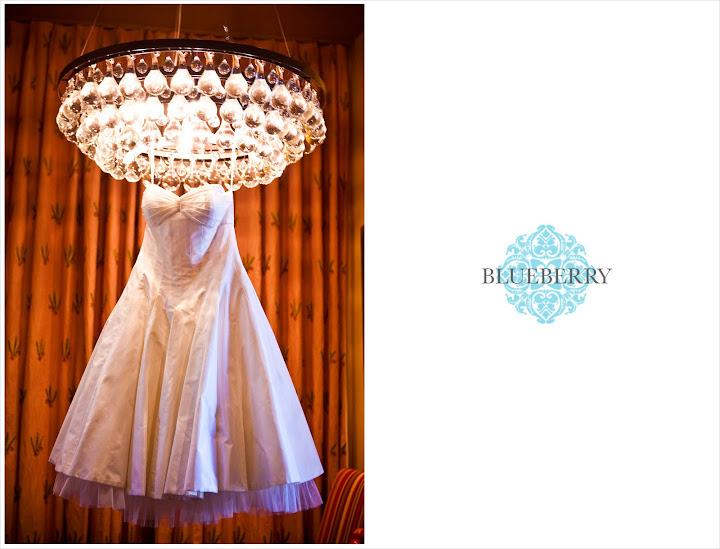 napa wedding photography outdoor vineyard brix yountville priscilla of boston gown