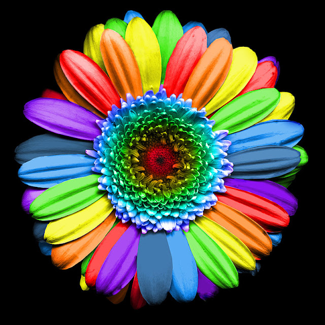 MY RAINBOWFLOWER...