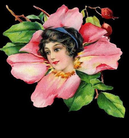 http://1.bp.blogspot.com/-83GmbCMQIs8/Twi7H77LefI/AAAAAAAACzA/71jh7mVLlYk/s1600/ladyflower.png