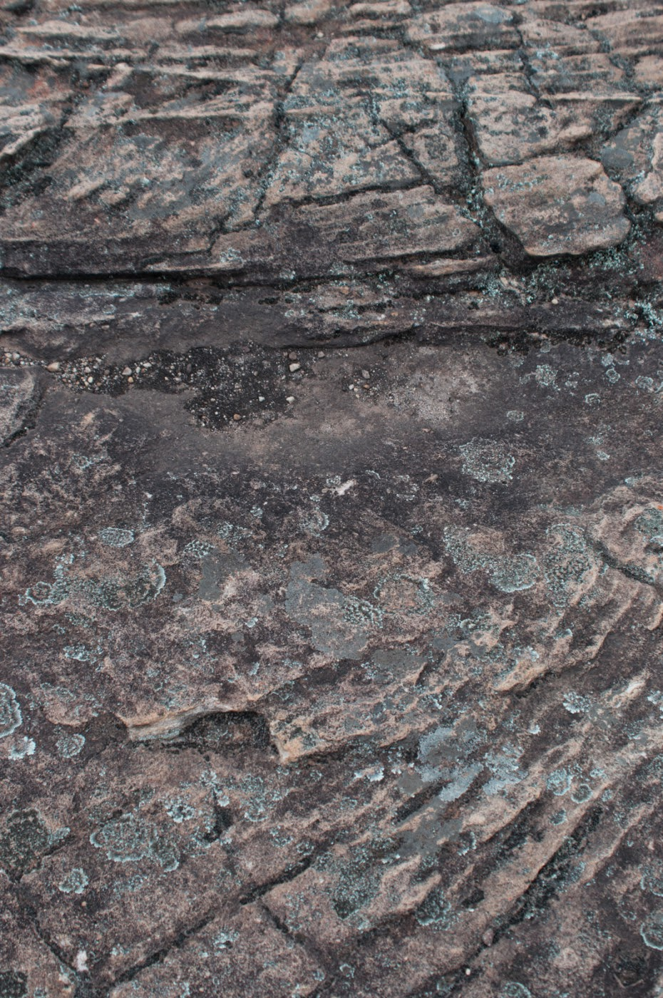 Grampians, sandstone, northern Grampians, Tim Macauley, Timothy Macauley, geology, abstract, abstraction, graphic, graphical, ground, floor, texture, rock, you won't see this at MoMA, Victoria, Australia, photographic art, photographic artist