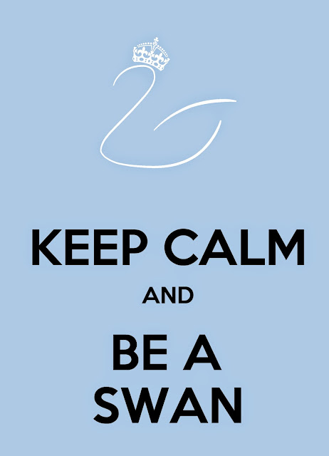 keep calm and be a swan