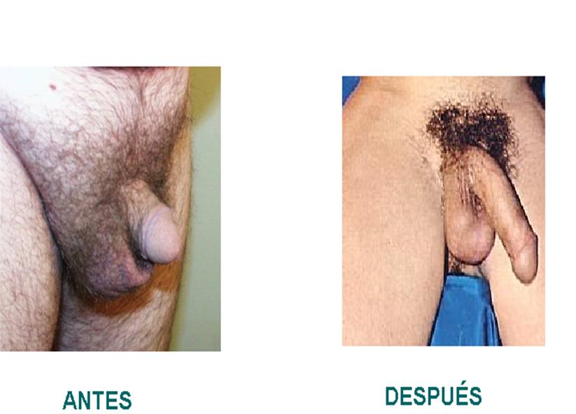 negras mostrando la vagina peluda v deos de chicas
