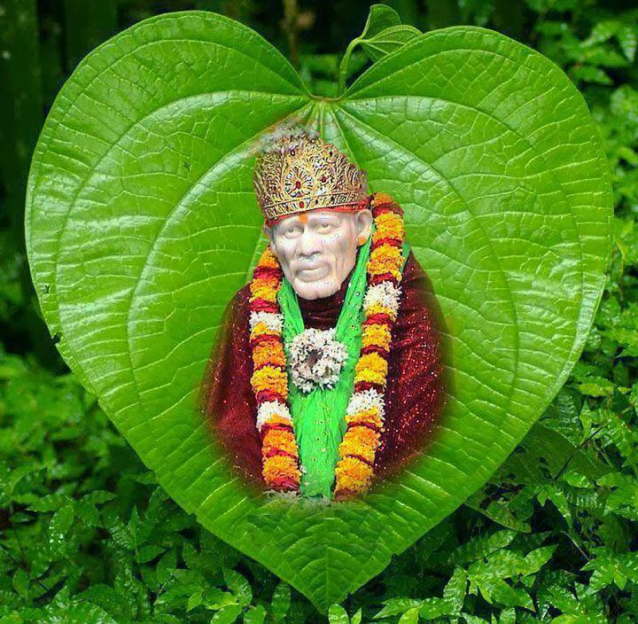 ... Baba Image on Green Leaf Beautiful Wallpaper   Sai Baba HD Wallpapers