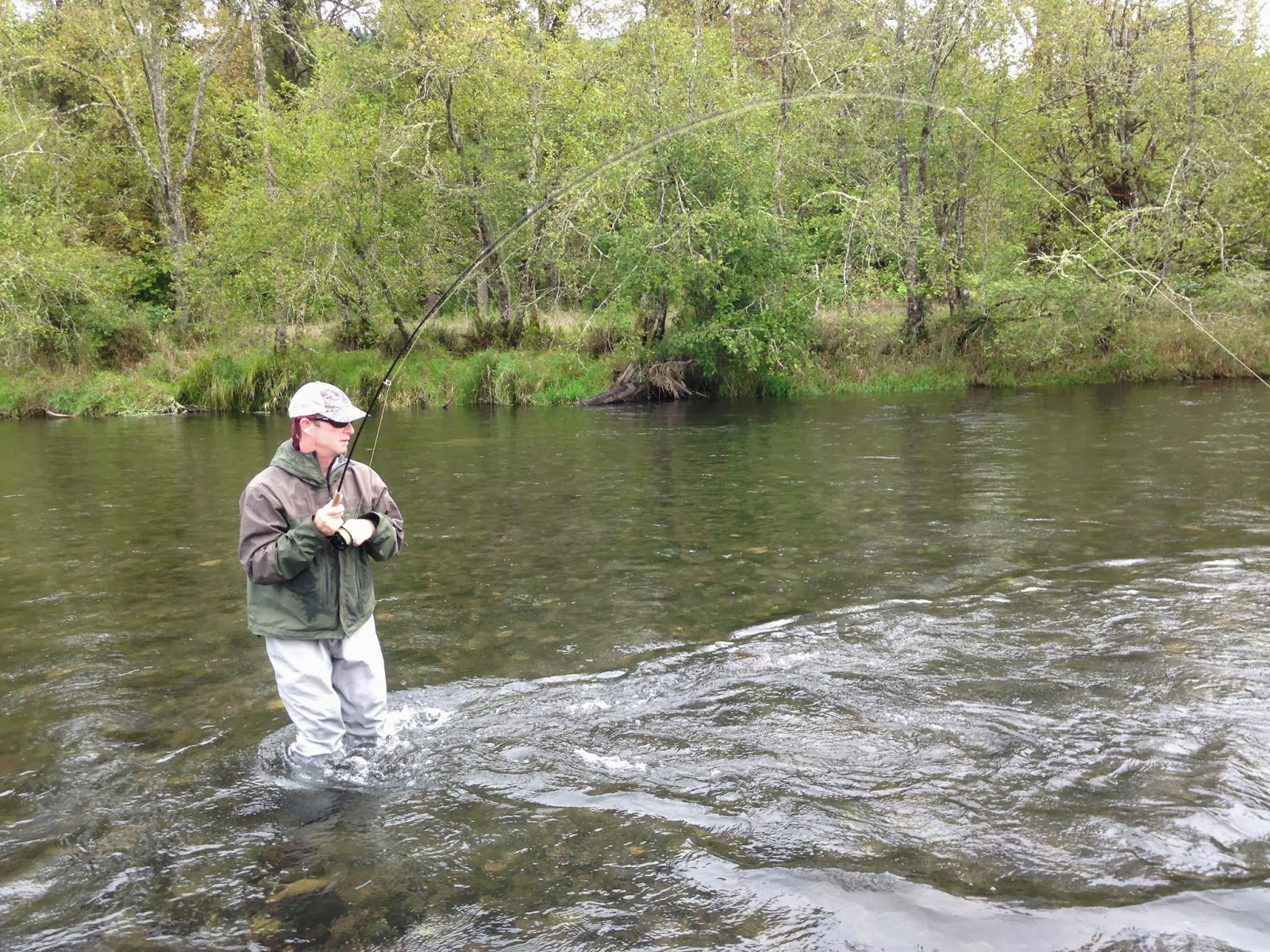 Brian marz 39 s fly fishing oregon blog mckenzie river fall for Mckenzie river fishing