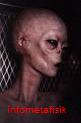 Ini 4 Jenis Alien yang Konon Pernah Singgah ke Bumi