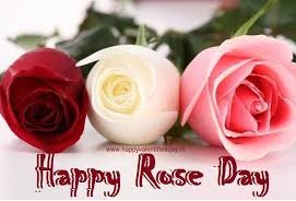 rose day pictures for facebook