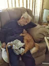 funny picture: granddad sleeps with a cat