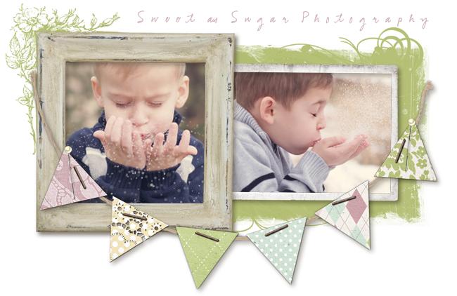 sweet as sugar photography