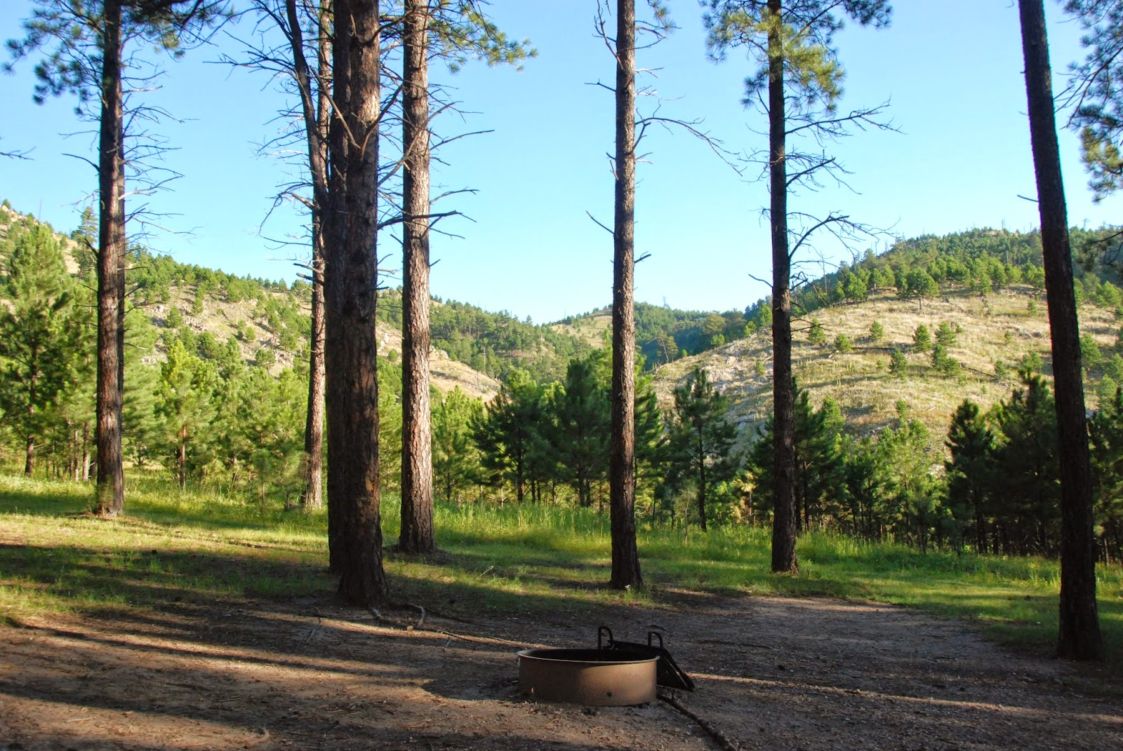 blue bell campground, custer state park