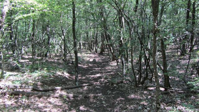 Тропа на Куш-Кая