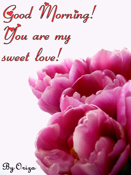 Good Morning My Love Romantic : Romantic site good morning you are my sweet love
