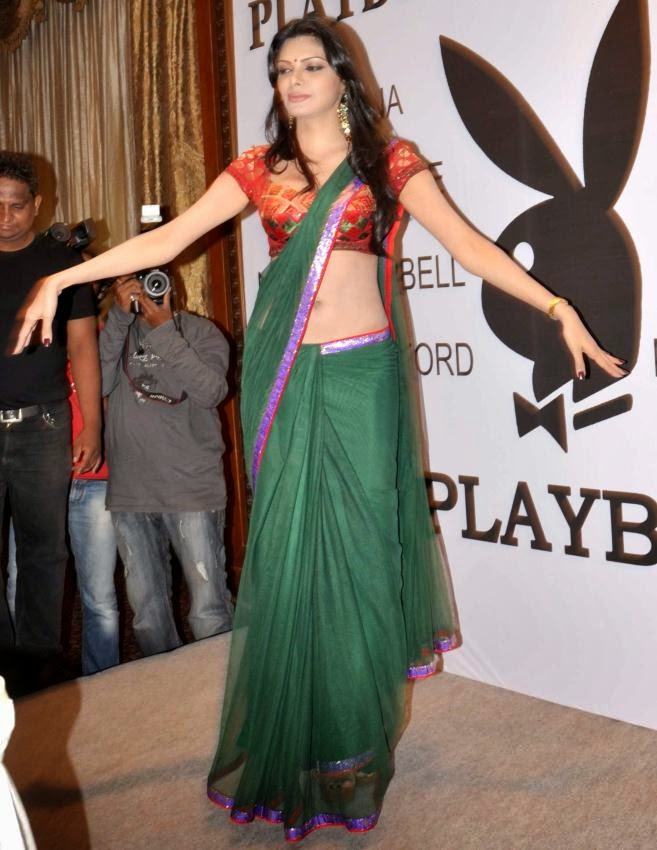 Sherlyn Chopra hot belly visible pics in transparent green saree