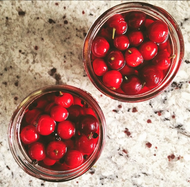 Vanilla Garlic: Sour: Pickled Sour Cherries
