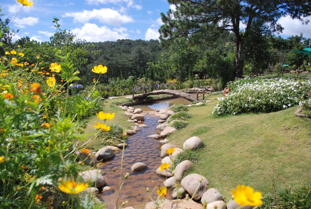 Vườn hoa trong khu du lịch Thung Lũng Vàng, Đà Lạt - Photo An Bui