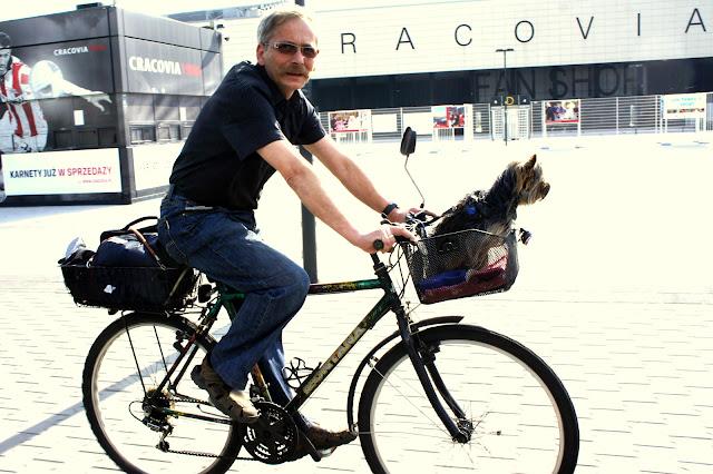 koszyk na psa na rower