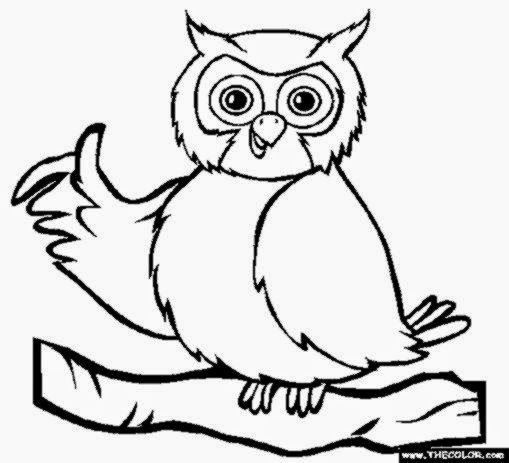 owls coloring pages 10 free printable coloring pages - Pictures Of Owls To Color