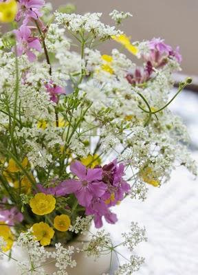 Kauneimmat kukat kasvaa takapihalla:)