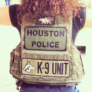 Marmorato dons the vest used by the K-9 unit.