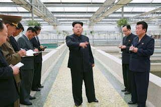 North Korean Leader 'Executes Aquarium Boss in  After Baby Turtles Starve To Death