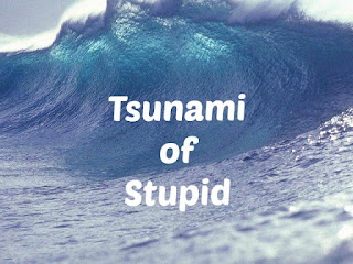 Tsunami of Stupid