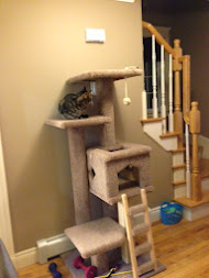 Buddy's Cat Tree