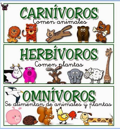 Características de los animales - Monografias.com