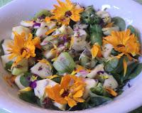 Salade de pourpier aux fleurs, aux fruits et aux graines de tournesol