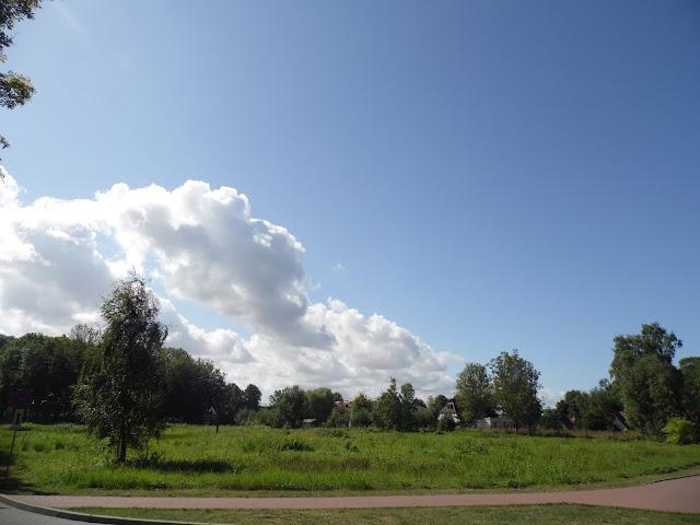 na szlaku pomiędzy Chłopami a Sarbinowem