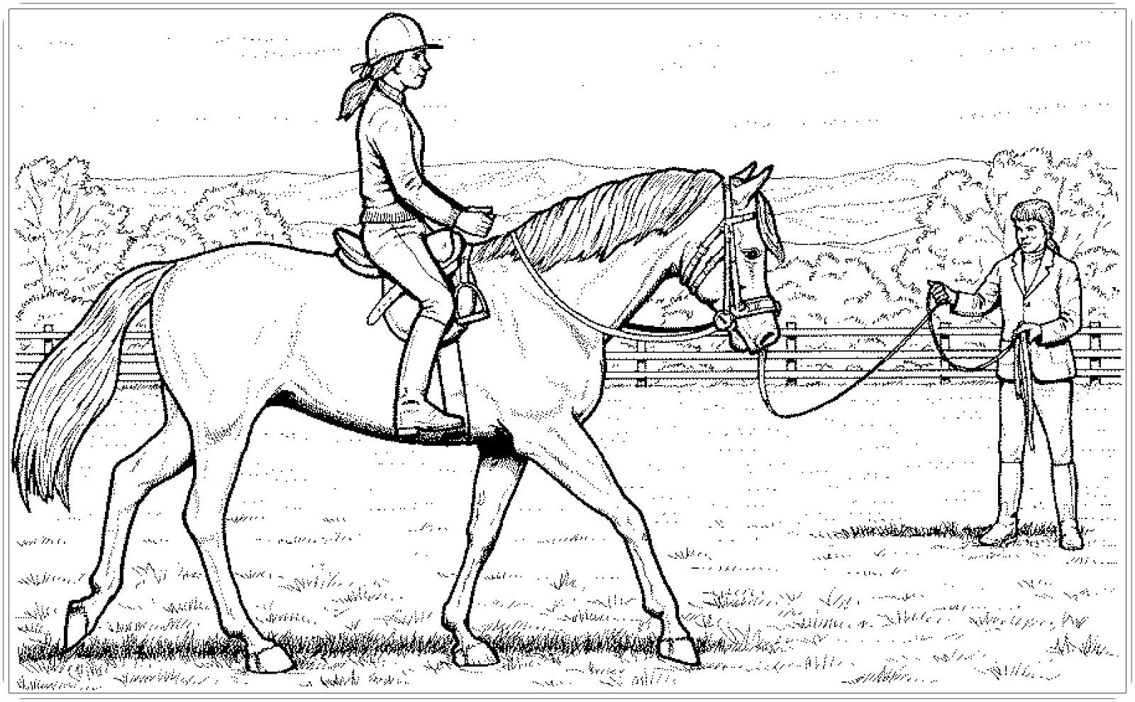 ausmalbilder kostenlos pferde mit reiter