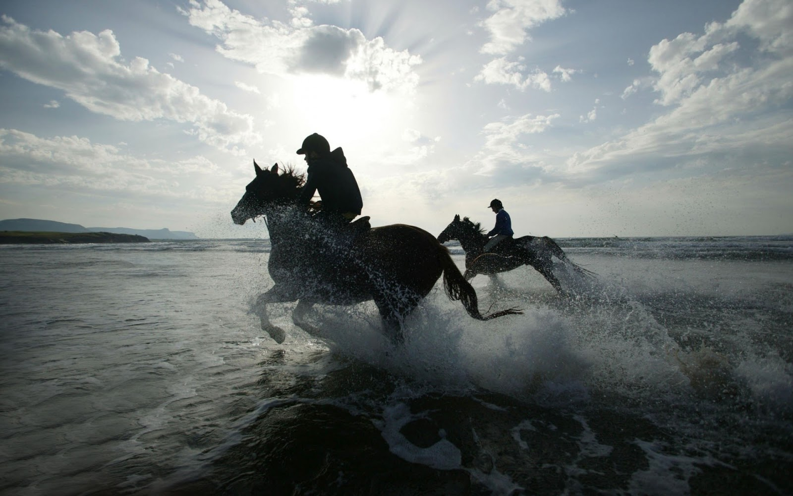 Top   Wallpaper Horse Sunrise - Horse+Racing-hdhut  Perfect Image Reference_295434.jpg