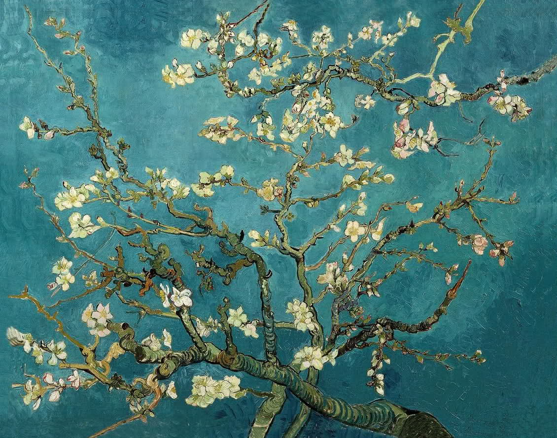 Model 39 s own cherry blossoms by vincent van gogh 1890s for Cherry blossom mural works