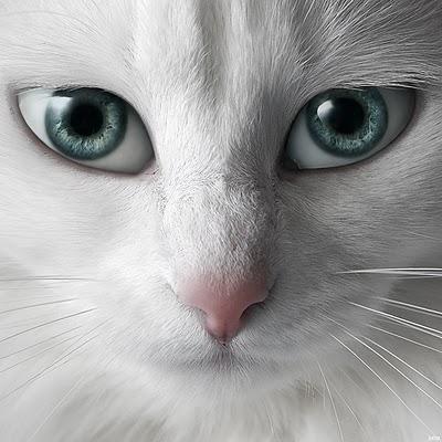 ojos azules llorando