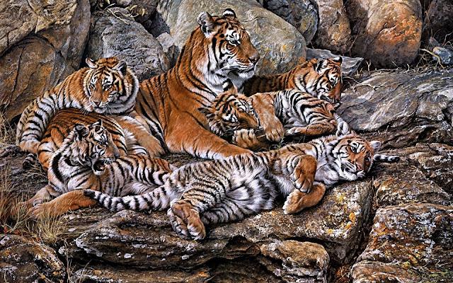 Pintura de una Tigresa con sus Cachorro por Alan M. Hunt