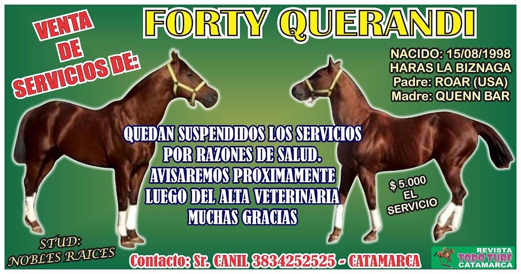 FORTY QUERANDI EN SERVICIOS
