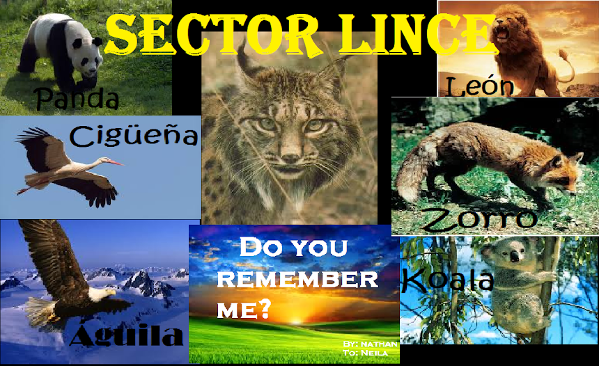 Sector Lince