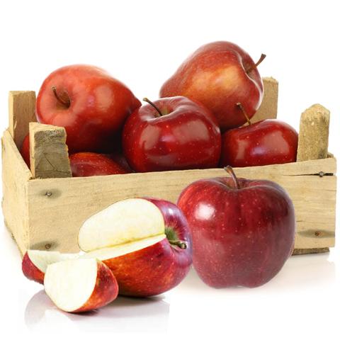Produtores da Catalunha esperam produzir 100 toneladas de maçãs orgânicas de montanha