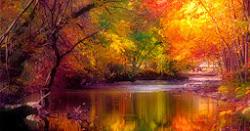 Fall Days