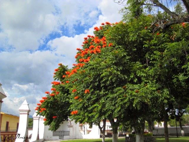 Ruta de los Conventos Zacualpan Morelos