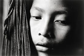 yanomami essay The yanomami people of tibet on studybaycom - other, essay - writerkevin | 100002432.