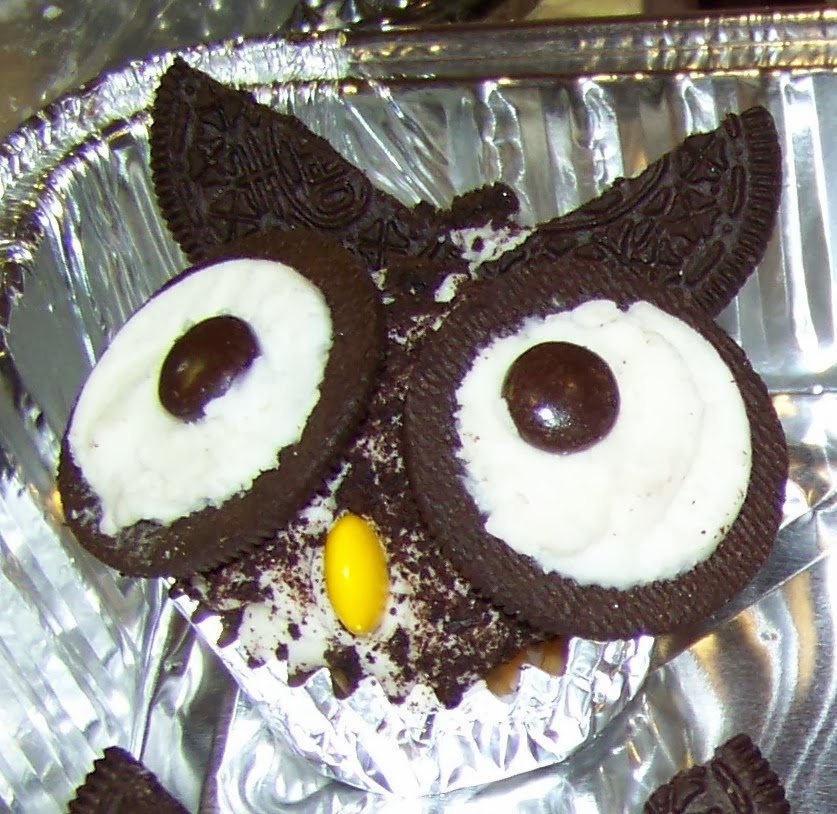The Ferrell Boys and Me How To Make Owl Cupcakes