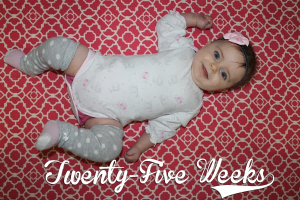 http://meetthegs.blogspot.com/2013/12/lilly-anne-25-weeks.html