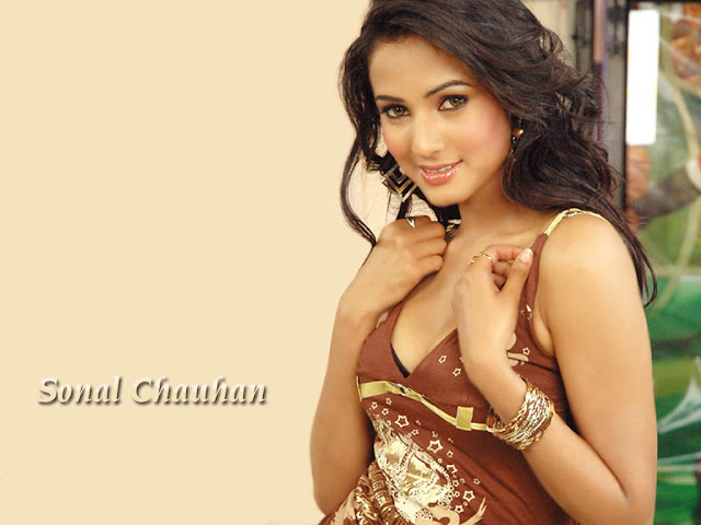 sonal chauhan is an indian fashion model and actress she has won