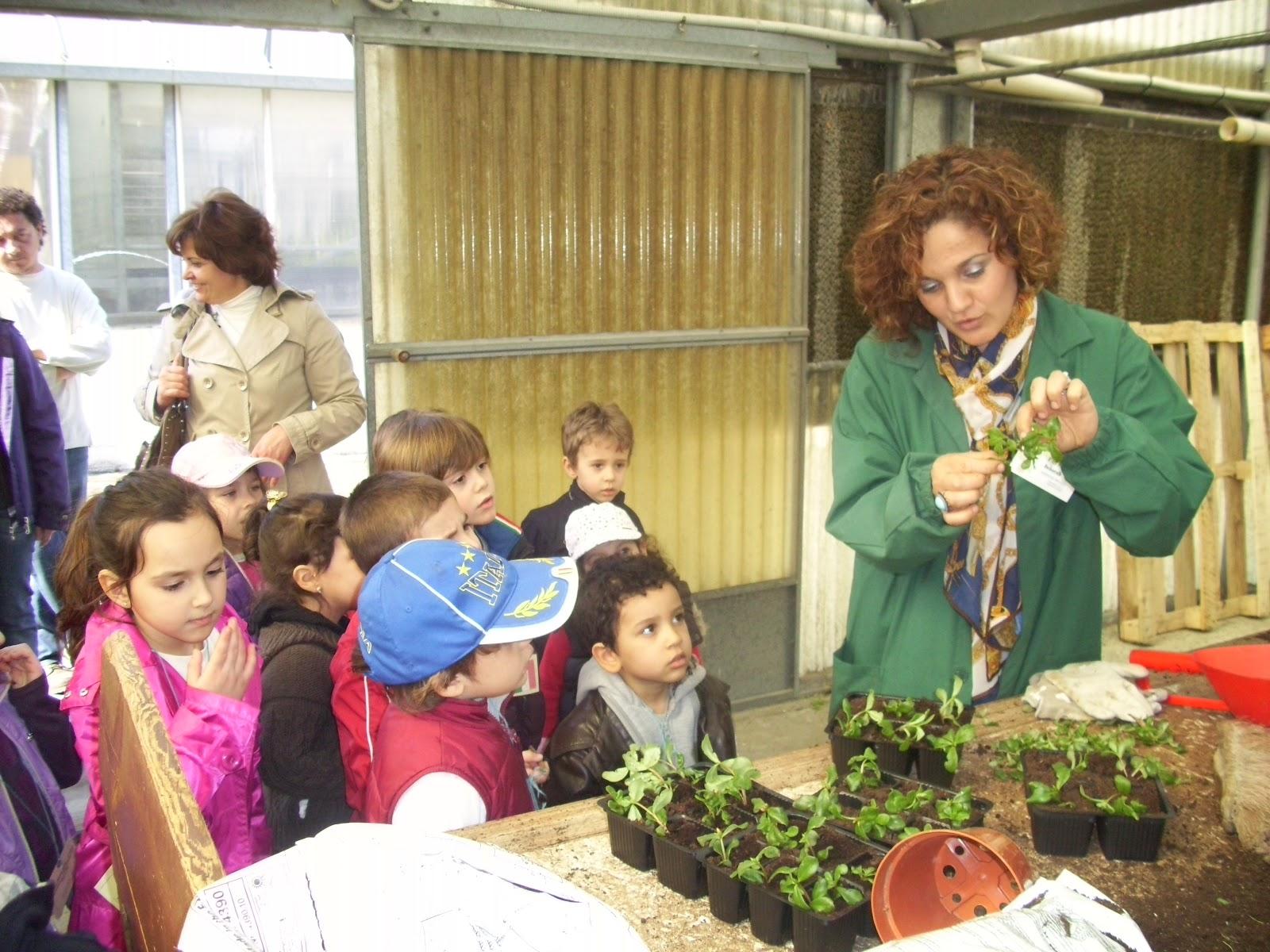 scuola gallini voghera lombardy - photo#6