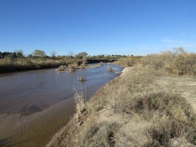 Rillito River