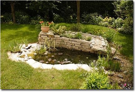 bassin de jardin tout équipé