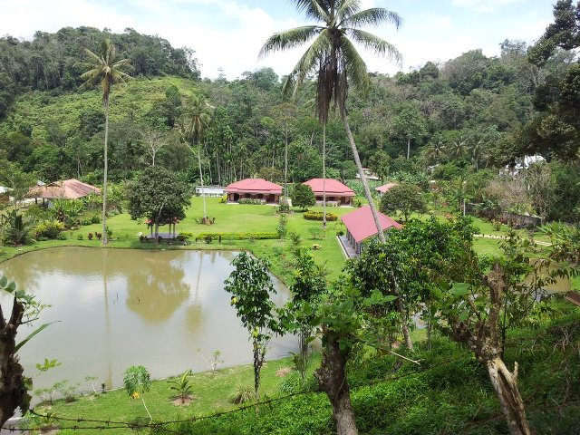 Fishing pond at Sum - Sum Valley.