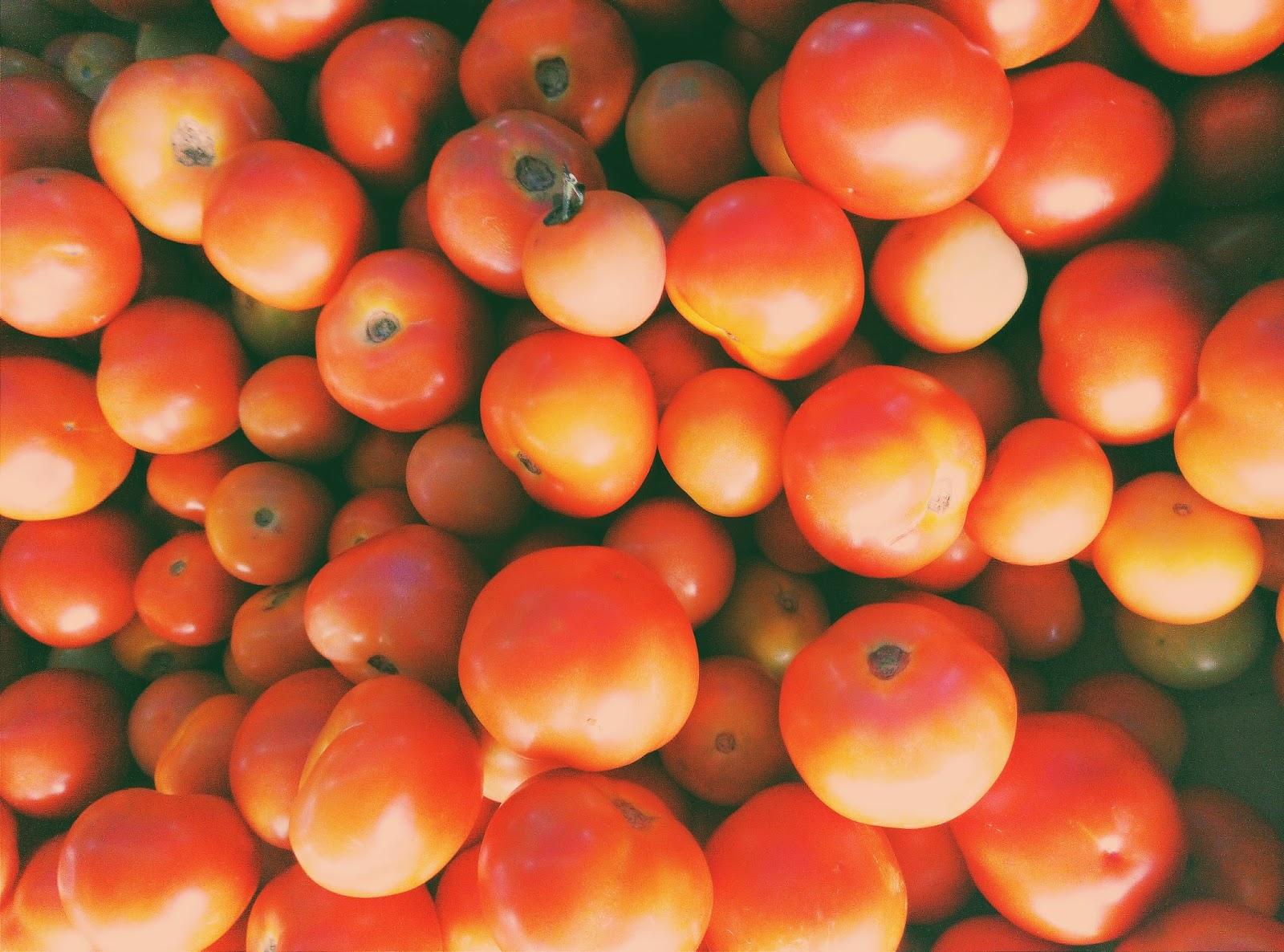 gambar tomato