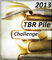 2013 TBR Pile Challenge