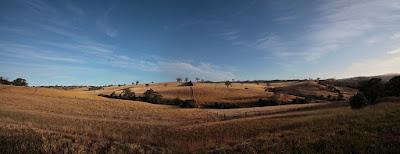 Greendale Landscape