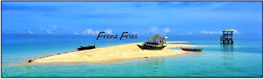 Frenz Fries